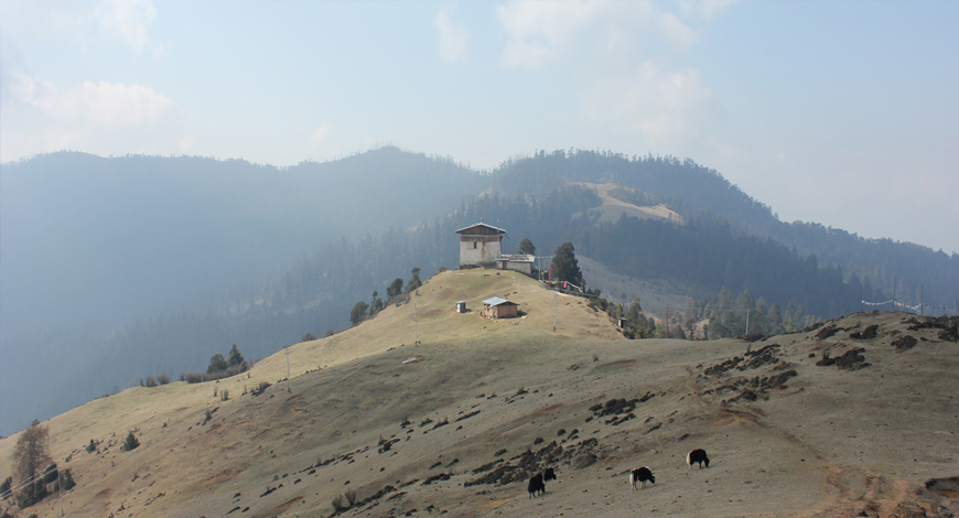 Highlights of Druk Bhutan tour