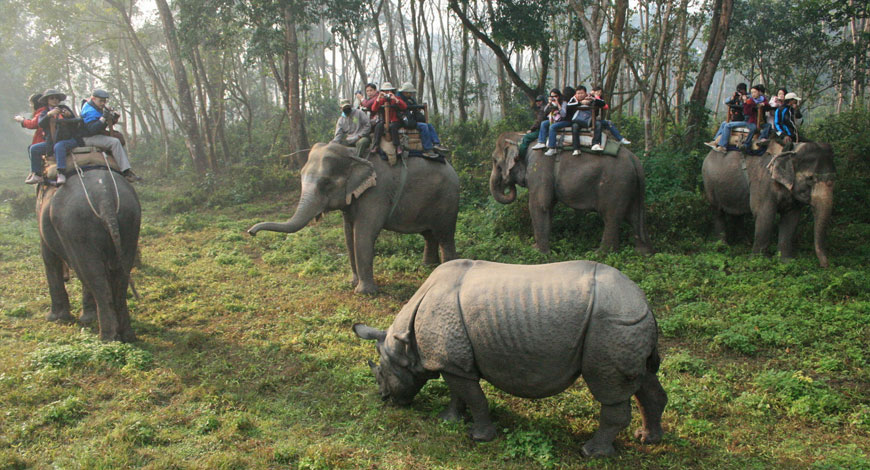 Chitwan Safari Extension